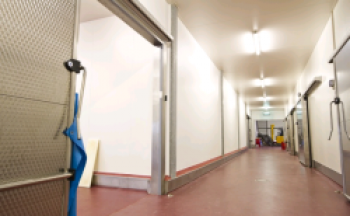 HACCP wall and ceiling panels